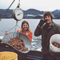 Collecting shrimp in Hood Canal on the RV Commando