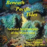 Beneath Pacific Tides: Subtidal Invertebrates of the West Coast cover