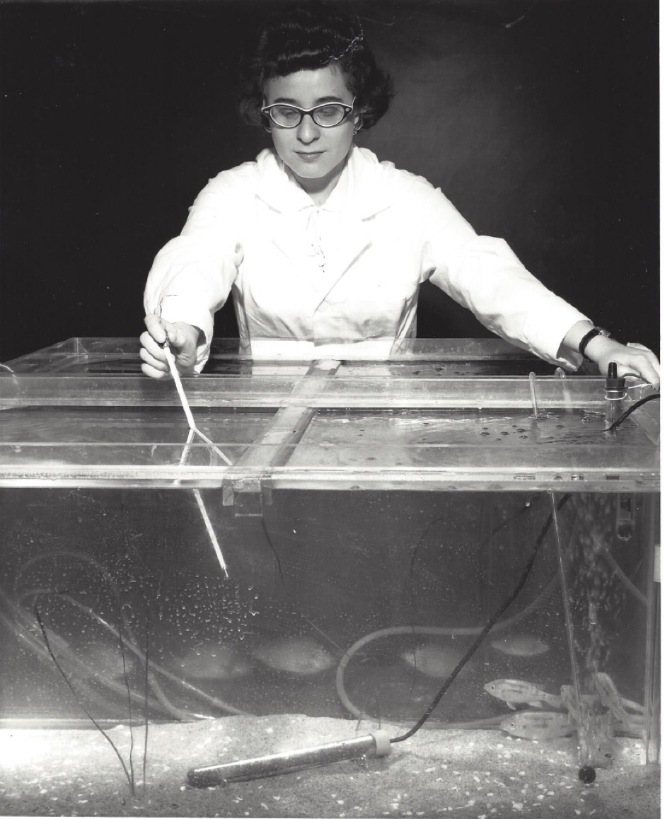 Frieda in 1960 with Tilapia as potential astronaut food