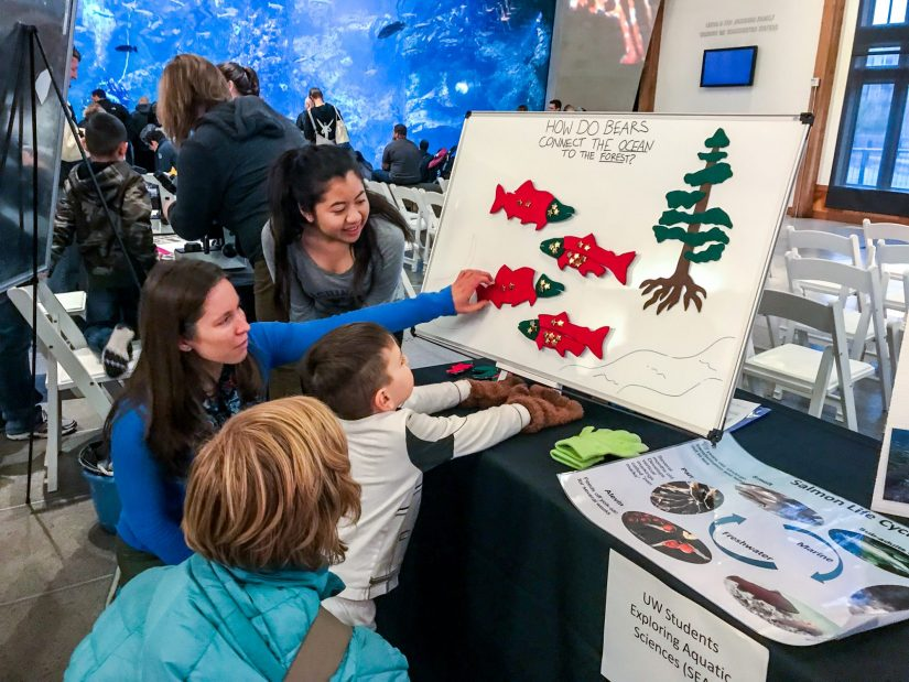 A SEAS volunteer using a model to explain the salmon life cycle to young children