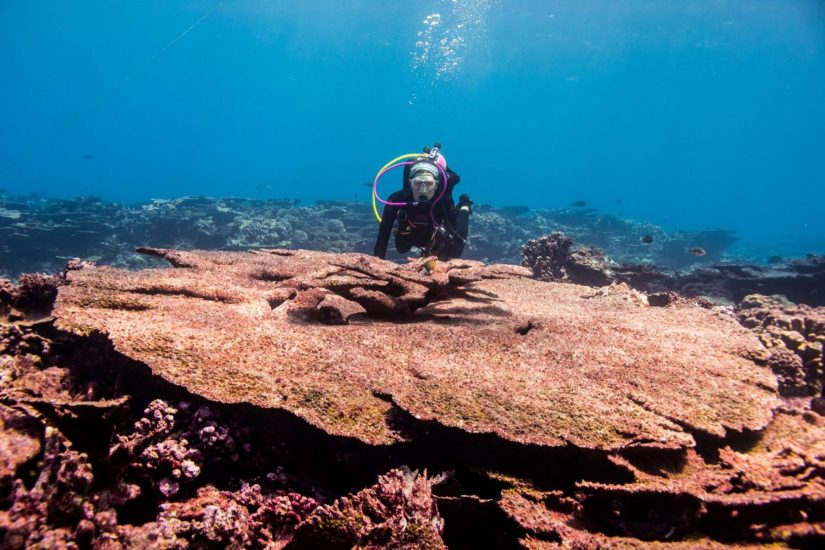 Danielle Claar scuba diving in Kiritimati