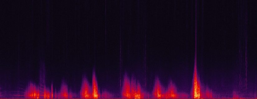 This spectrogram (a visualization of sound level at different frequencies)