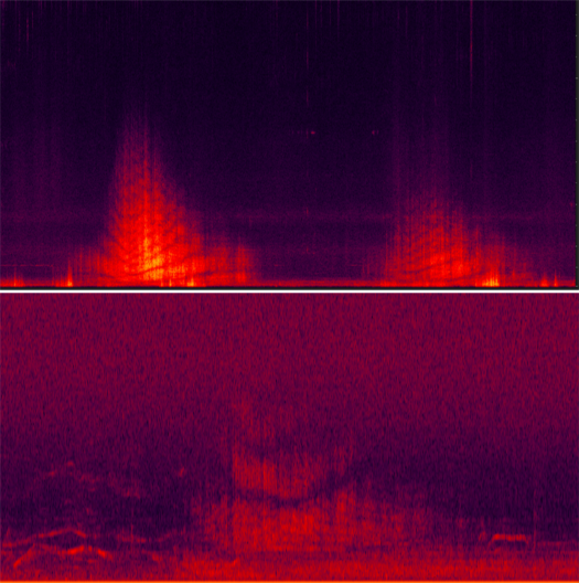 Contrasting spectrograms of military Growler aircraft (top) and commercial aircraft (bottom) events showing the frequency and strength of audio signals for a period of time.