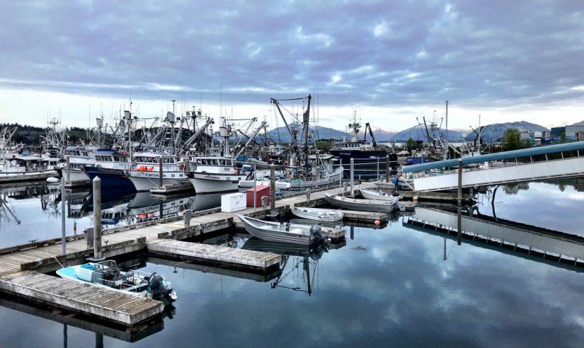 Fishing boats in a harbor in Kodiak, Alaska.