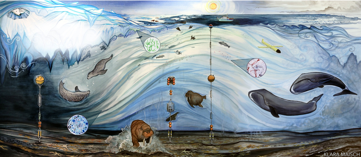 Artwork by Alaskan artist Klara Maisch that represents the environmental changes over a one year cycle at the CEO. Art depicts many marine species such as whales, walruses, and fish.