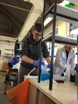 John working in the lab at Friday Harbor Labs
