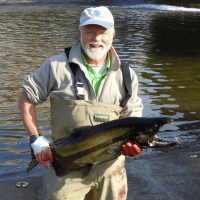 Orlay holding a coho salmon at the UW hatchery in 2008